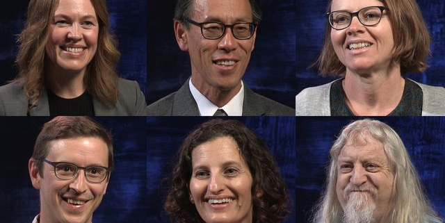 2017 Faculty Teaching Award Winners