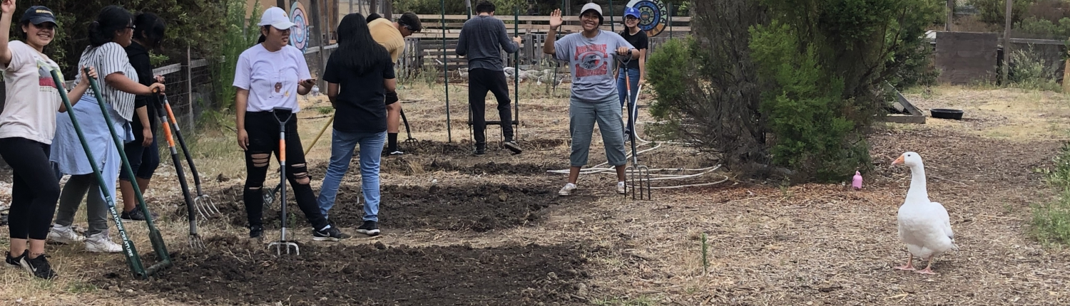 Youth participant tiling soil at farm program at Sotomayor Learning Complex